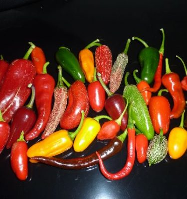 Devon Chilli Man's mild selection