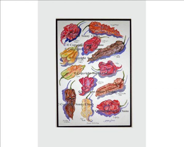 Devon Chilli Man Art Print